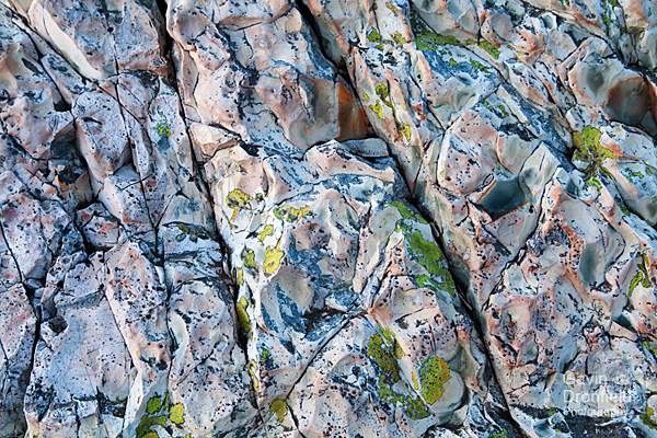 lichen on laminated volcaniclastic claystone at Great End summit