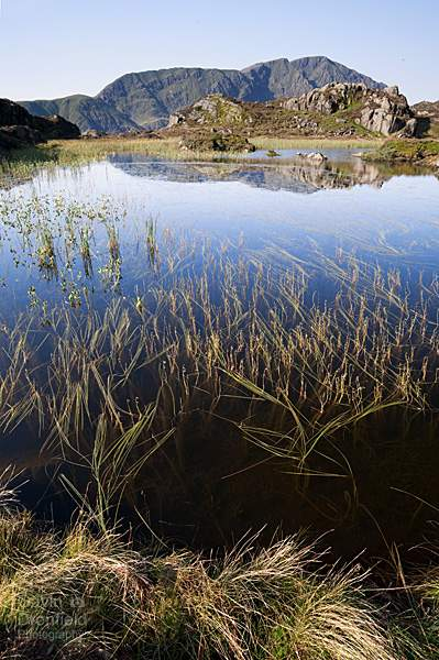 Pillar reflected in Innominate Tarn on a bright sunny day