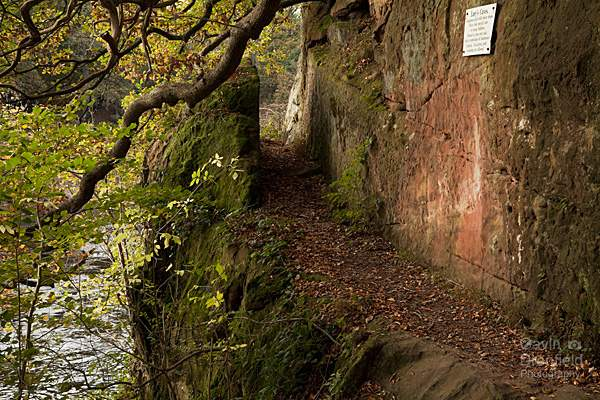 path above River Eden leading to Lacys Caves