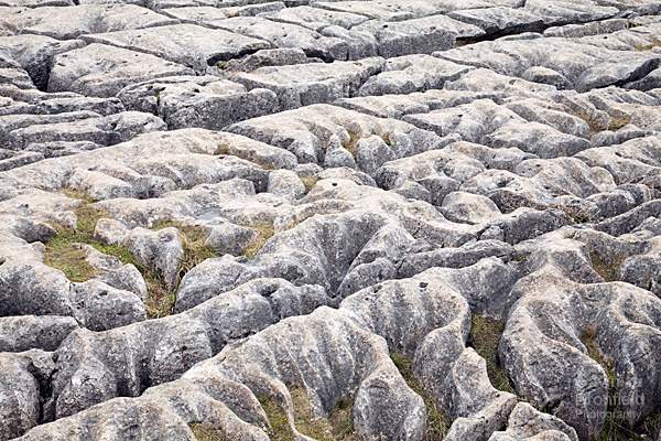 limestone clints and grykes on Malham Cove limestone pavement