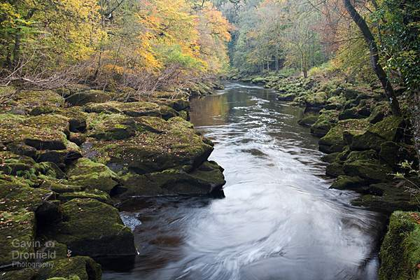 River Wharfe exits the Strid rapids