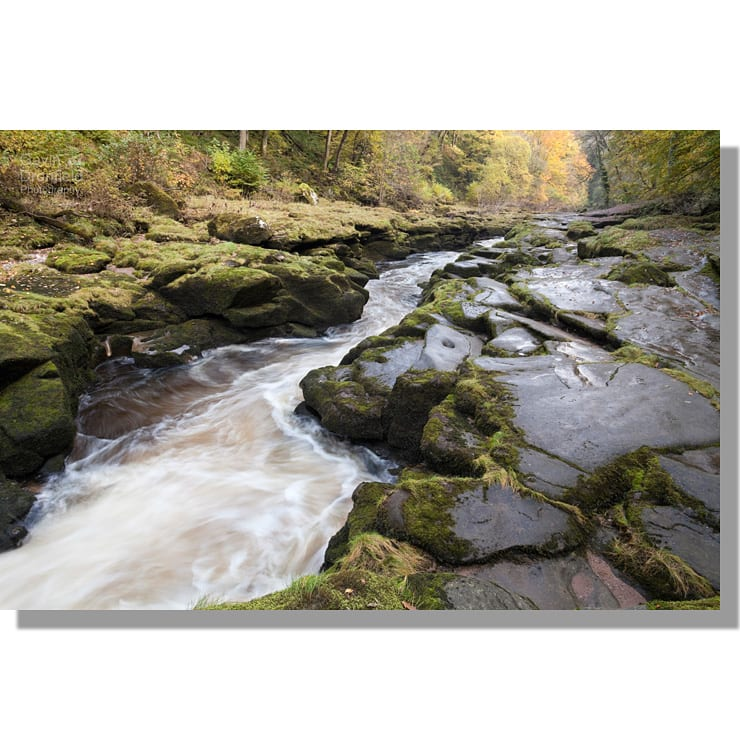 The Strid in River Wharfe in autumn