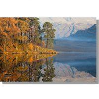 Scots pines reflected in autumnal Blea Tarn