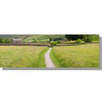 paved path through summer Muker meadows panorama
