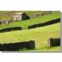 Thwaite fields and drystone barn in summer