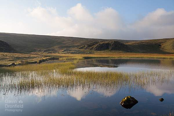 cumulus clouds reflected in a calm autumnal dalehead tarn