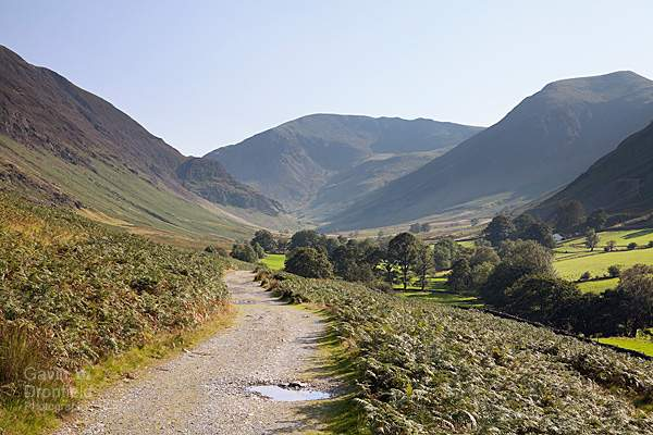 dale head and hindscarth from the track in newlands valley in bright summer sunshine