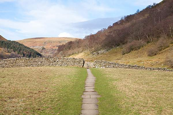 swaledale meadow under blue winter sky with paved path running through it towards gate in dry stone wall