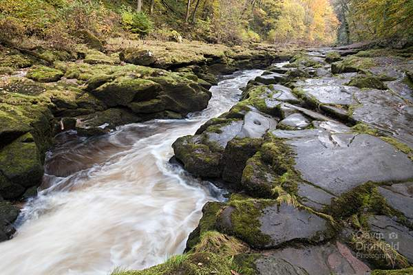 The Strid rapids in River Wharfe in autumn