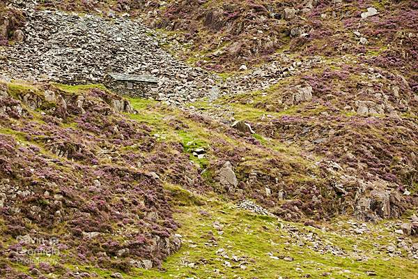 Warnscale Head Bothy surrounded by slate rocks and flowing heather