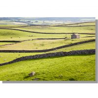 Austwick fields and lines of Yorkshire Dales drystone walls