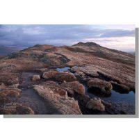 Place Fell peat bog in dawn light