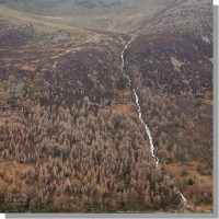 sourmilk gill waterfall tumbles from bleaberry tarn down through rustic-coloured coniferous woodland of burtness wood in winter