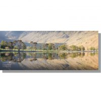 Buttermere Scots Pines dawn reflection panorama with char hut