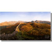 Lingmoor Fell heather dawn panorama in august of crinkle crags bow fell and langdale pikes