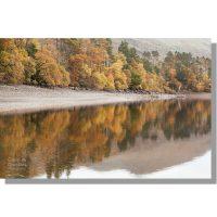 woodland reflections on Thirlmere Reservoir shoreline