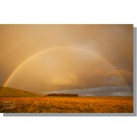 double rainbow over Great Close plantation near Malham Tarn