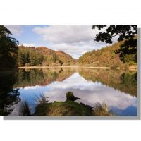 Yew Tree tarn autumnal reflections of trees and clouds