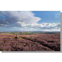 Siss Cross view of Eskdale from Danby Low Moor in august