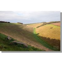 wolds poetry bench above horse dale on bright autumnal dawn