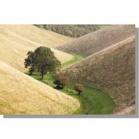 meandering wolds valley of horse dale with autumnal trees