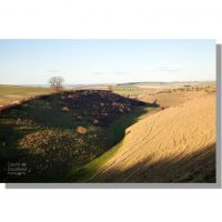 deep dale wolds valley near wharram percy with sunset shadows in autumn