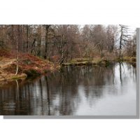 tree-lined disused quarry reservoir on holme fell named holme fell tarn with red hues of winter
