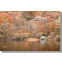 white boathouse on rydal water surrounded by golden leaved autumnal trees reflected on calm lake surface