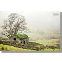 old derelict stone barn with fern covered roof overlooking mist enshrouded verdant hayeswater gill valley
