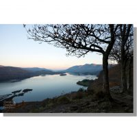 surprise view vista at dawn over derwent water and distant skiddaw past silhouetted trees under clear blue red skies