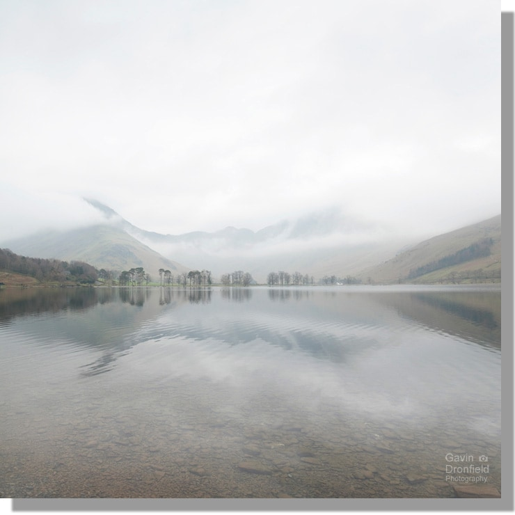 buttermere lake reflections of white cloudy skies shrouding fleetwith pike and haystacks above line of scots pines