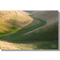 snaking Holm Dale chalk valley in Wolds